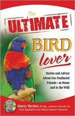 ultimate-bird-love-rob-simbeck-nashville-writer